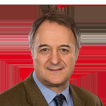 Prof. Dr. Luigi Gnudi